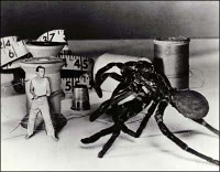Incredible Shrinking Man spider